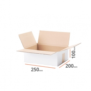 White cardboard box 250x200x100mm (external dimension) - 20 pcs
