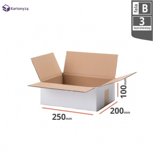 White cardboard box 250x200x100mm (external dimension)- 20 pcs.