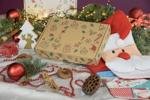 Christmas box 310x220x55 mix - 20 PCS