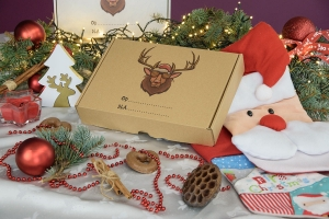 Christmas box 310x220x55 crazy moose - 20 PCS
