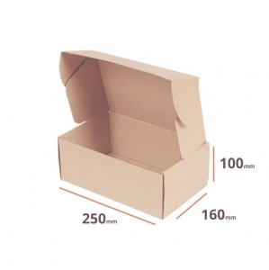 Postal cardboard box 250x160x100mm - 40 pcs