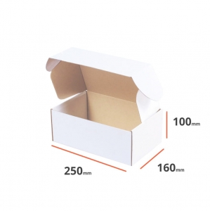 White postal cardboard box 250x160x100mm - 40 pcs
