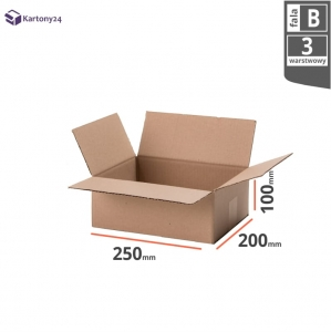 Cardboard box 250x200x100mm (external dimension)- 20 pcs.